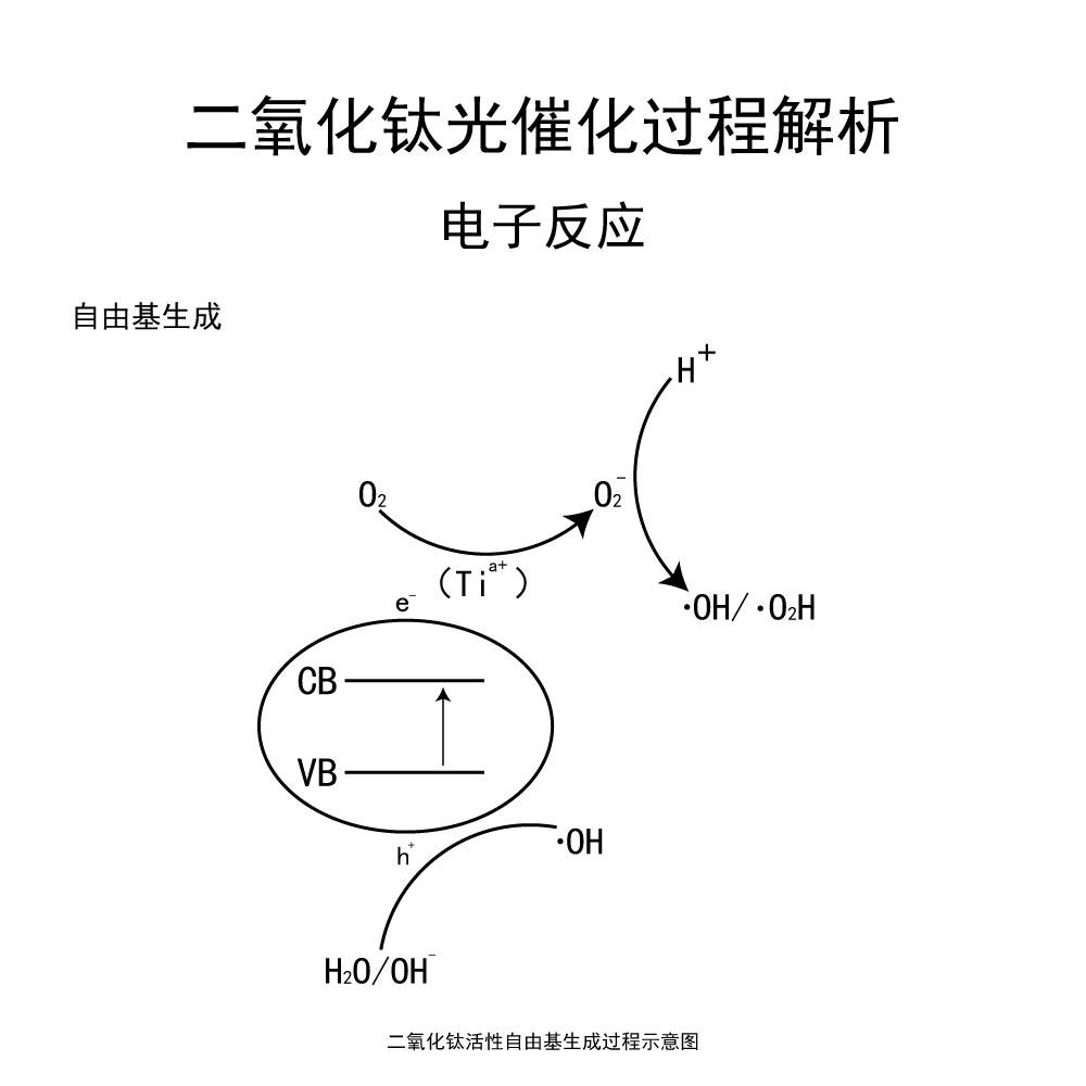 光催化-4.jpg